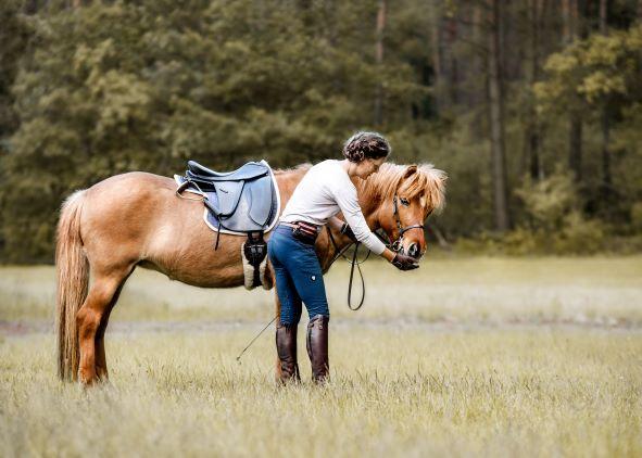 Bild: der Hidalgo Lederbaumsattel liegt gut auf dem Pferderücken und passt sich der Rückenform an an.