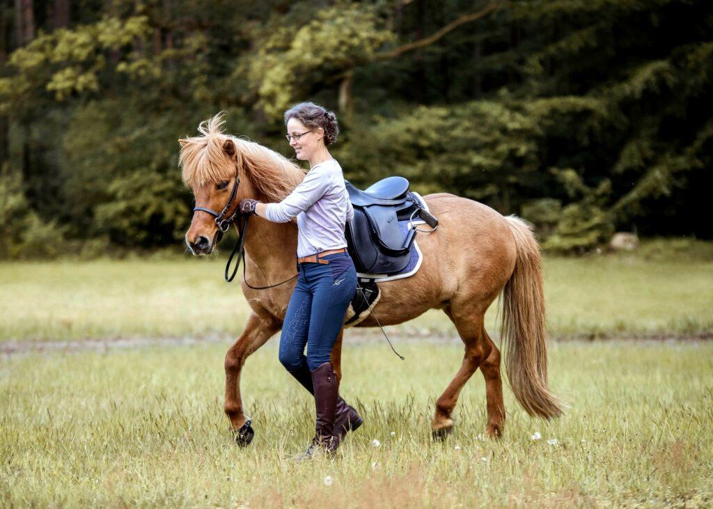 Das Pferd trabt in der klassischen Handarbeitsposition.