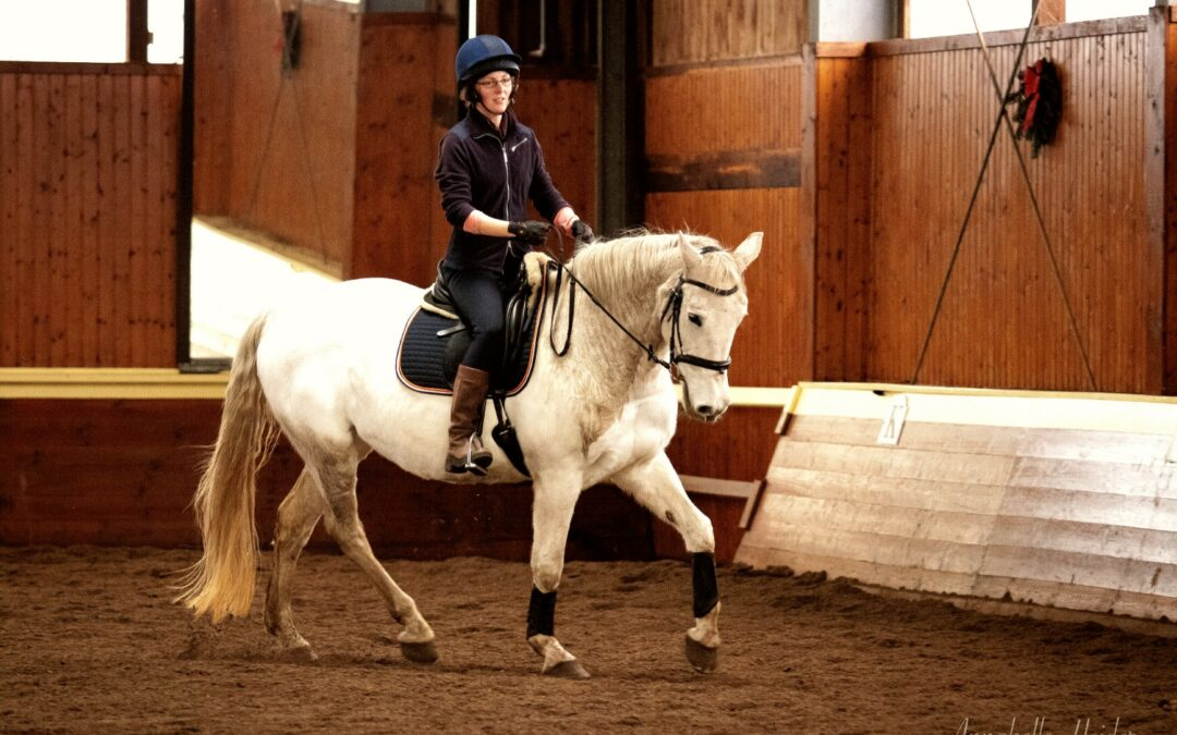 Möchtest du dein Pferd geraderichten? Tu etwas für deinen Sitz!