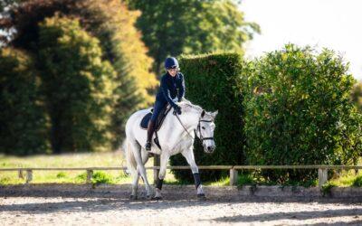 2020: Erstelle kostenlos einen Trainingsplan für dich und dein Pferd